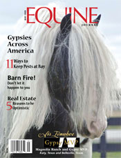 Ivanhoes Cover Shot on Equine Journal