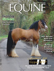 Sundance lands cover of Equine Journal