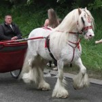 appleby-horse-fair-2010