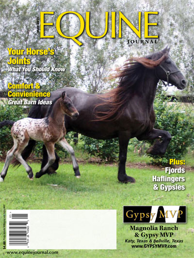 GypsyMVP-Equine-Journal